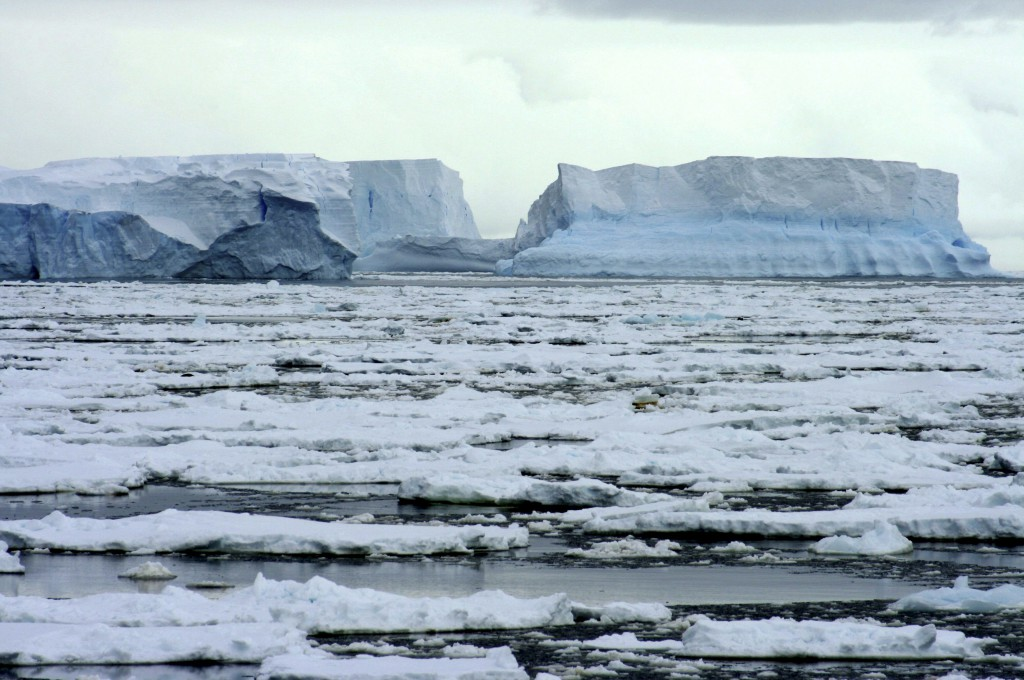 Ice shelf Wilkins